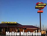 Mellow Mushroom, Bristol VA